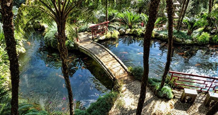 jardin tropocal funchal