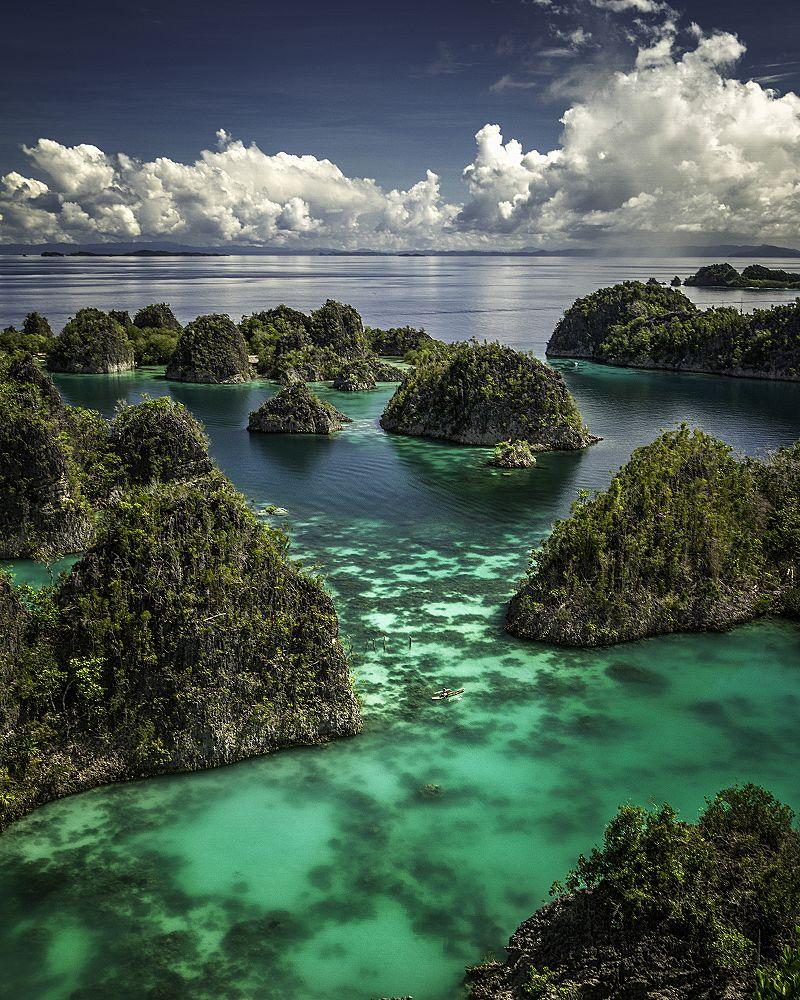 Îles Raja Ampat, Indonésie