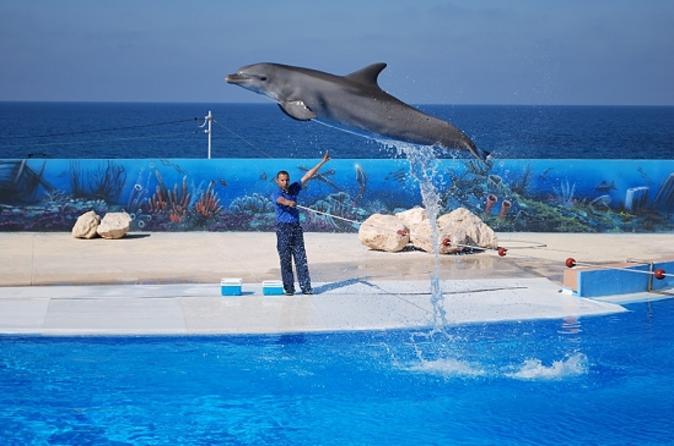circuit malte dauphins