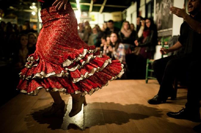 spectacle flamenco malaga